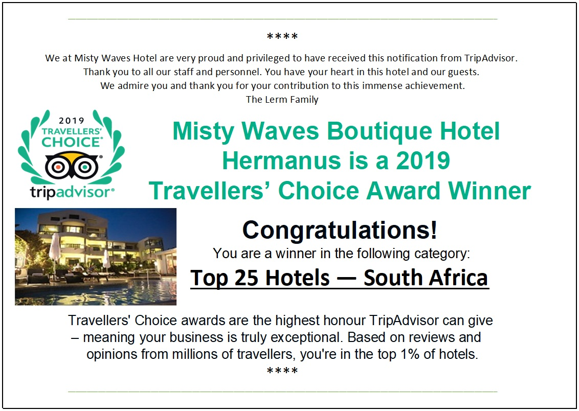 Misty Waves Hotel – Page 2 – Luxury Hotel accommodation in